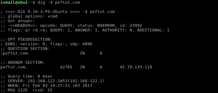 Show Only IPv4