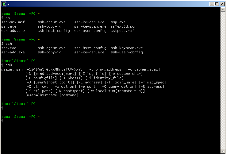 Run Ssh With Cygwin