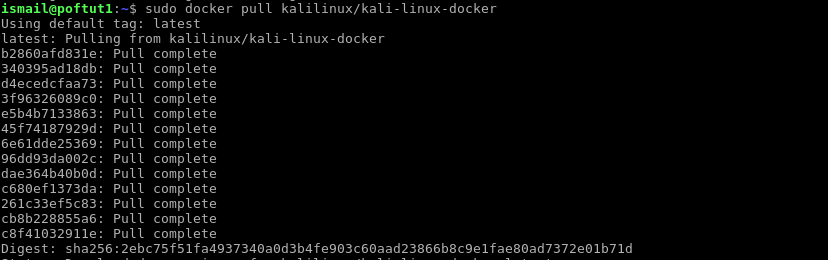 Pull and Install Kali Container Image