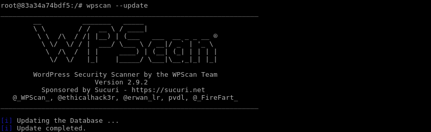 Update Wpscan Explicitly