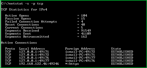 Display Only TCP Protocol Statistics