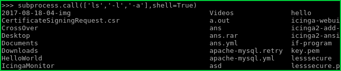 Create Own Shell For Process