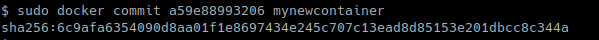 commit - Create New Image From Running Container