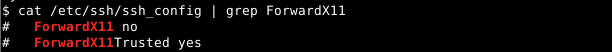 Check Ssh Client ForwardX11 Setting