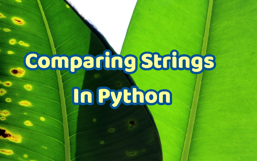 Comparing Strings In Python – POFTUT