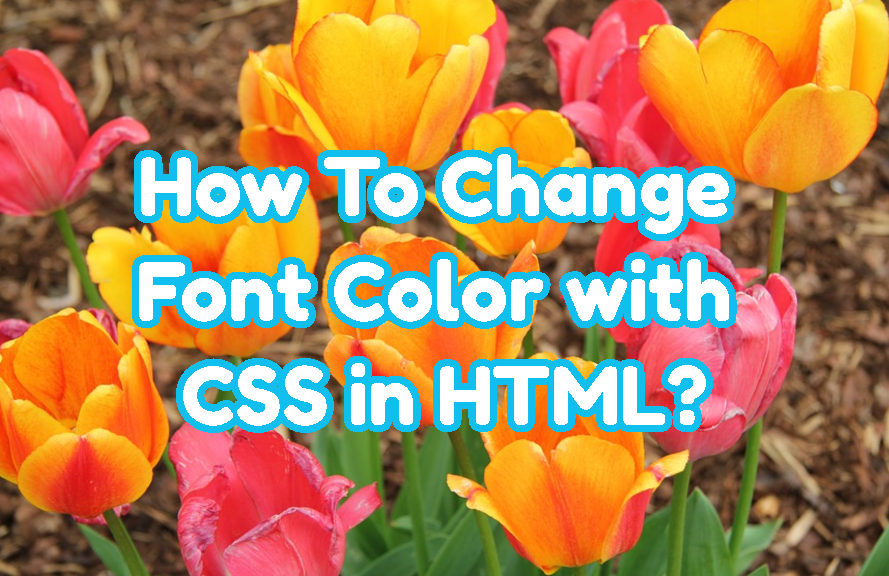 How To Change Font Color with CSS in HTML?