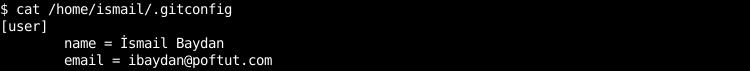 Global Git Configuration File