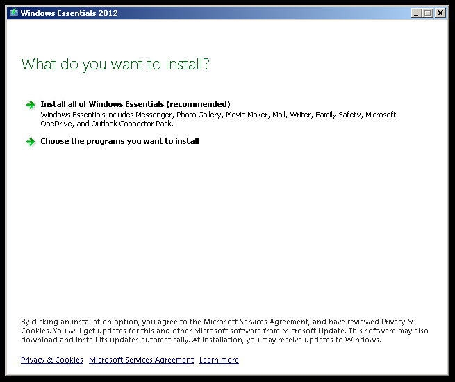 Windows Essentials Select Installation Type Full or Selection