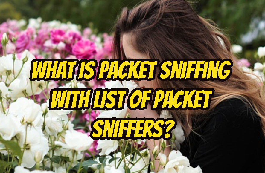 What Is Packet Sniffing with List Of Packet Sniffers?