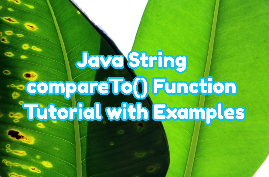 Java String compareTo() Function Tutorial with Examples