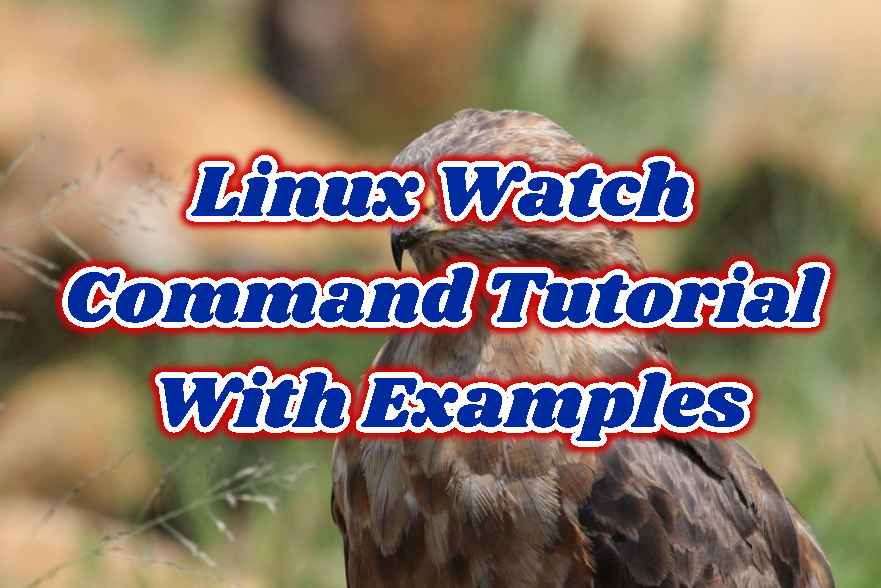 Linux Watch Command Tutorial With Examples