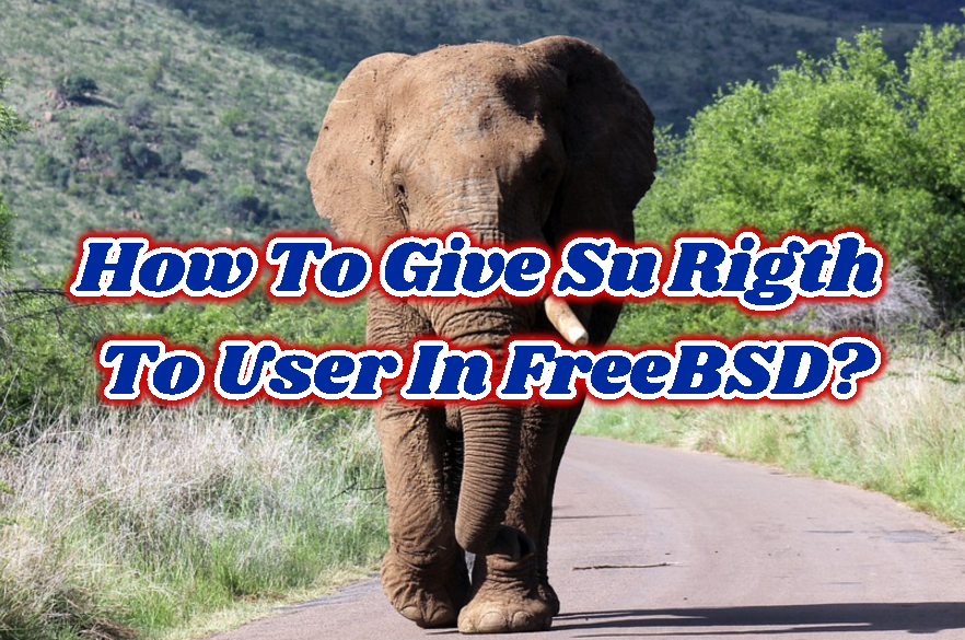 How To Give Su Rigth To User In FreeBSD?