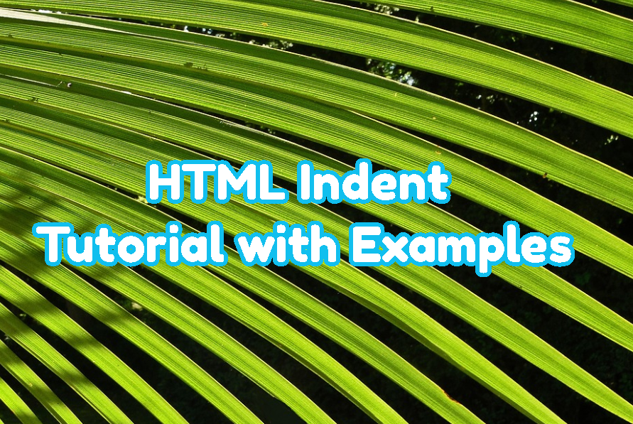 HTML Indent Tutorial with Examples