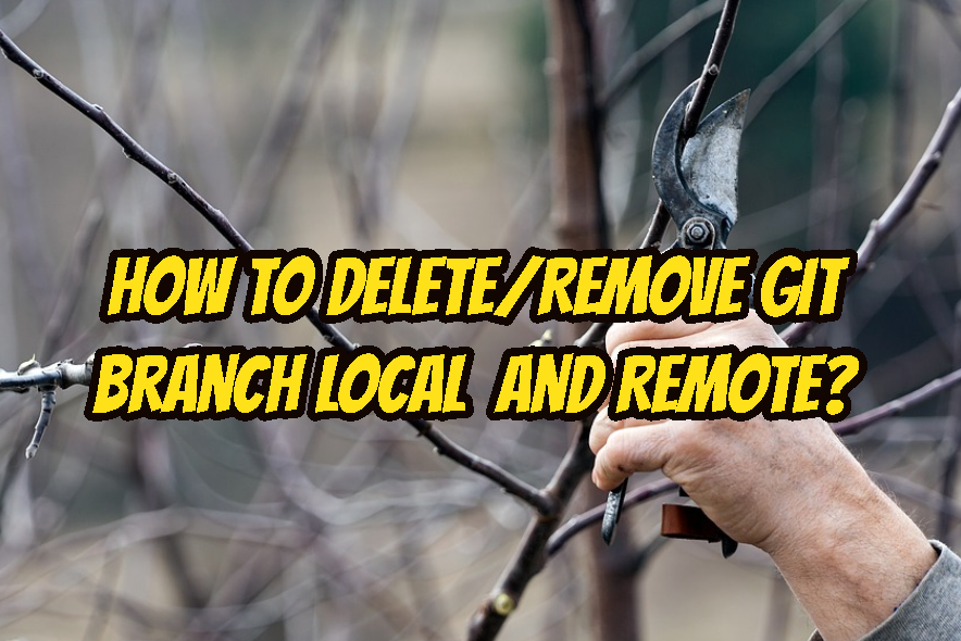 How To Delete/Remove Git Branch Local and Remote? Tutorial with Examples