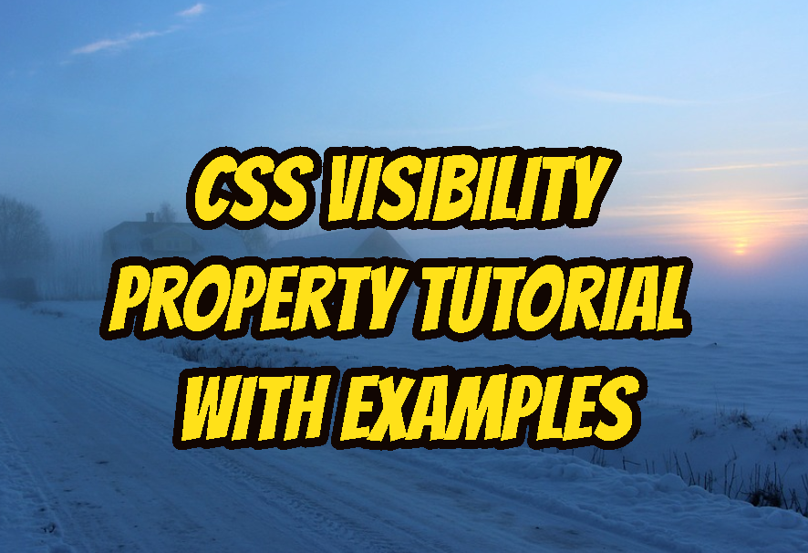 CSS Visibility Property Tutorial with Examples