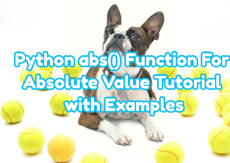 Python abs() Function For Absolute Value Tutorial with Examples