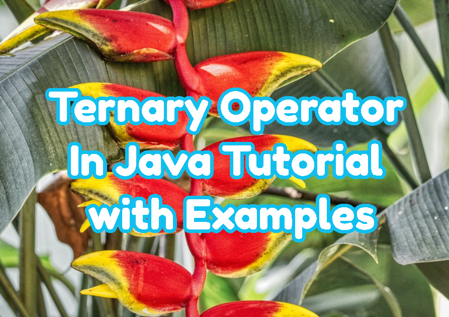 Ternary Operator In Java Tutorial with Examples