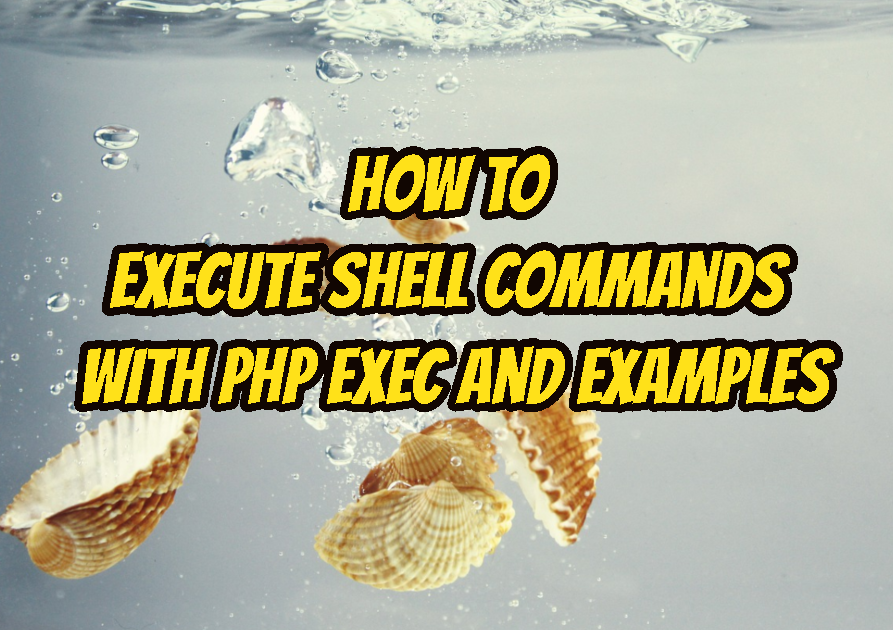 How To Execute Shell Commands with PHP Exec and Examples