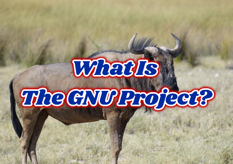 What Is The GNU Project?
