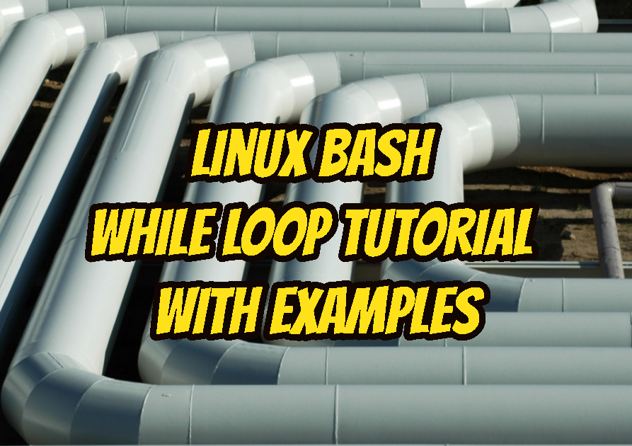 Linux Bash While Loop Tutorial with Examples